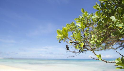 レンタカーで沖縄の海へ行こう!沖縄本島行きたいビーチ10選♪
